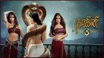 Naagini Season 3 (Tamil) 12th December 2018 Full Episode 104