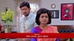 Bokul Kotha 14th February 2019 Full Episode 370 Watch Online