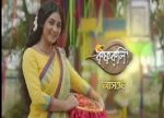 Krishnakoli 13th February 2019 Full Episode 236 Watch Online