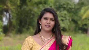 Mouna Raagam (Telugu) 15th February 2019 Full Episode 130
