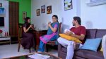 Phulpakharu 23rd February 2019 Full Episode 563 Watch Online